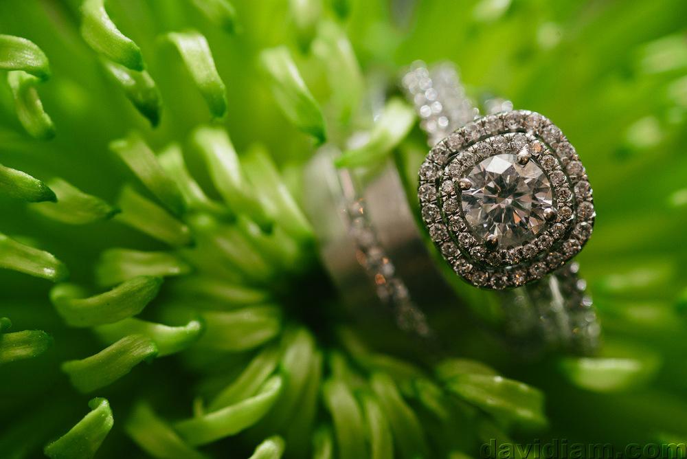 Kitchener-Wedding-Photography-Golfs-Steakhouse-046.jpg