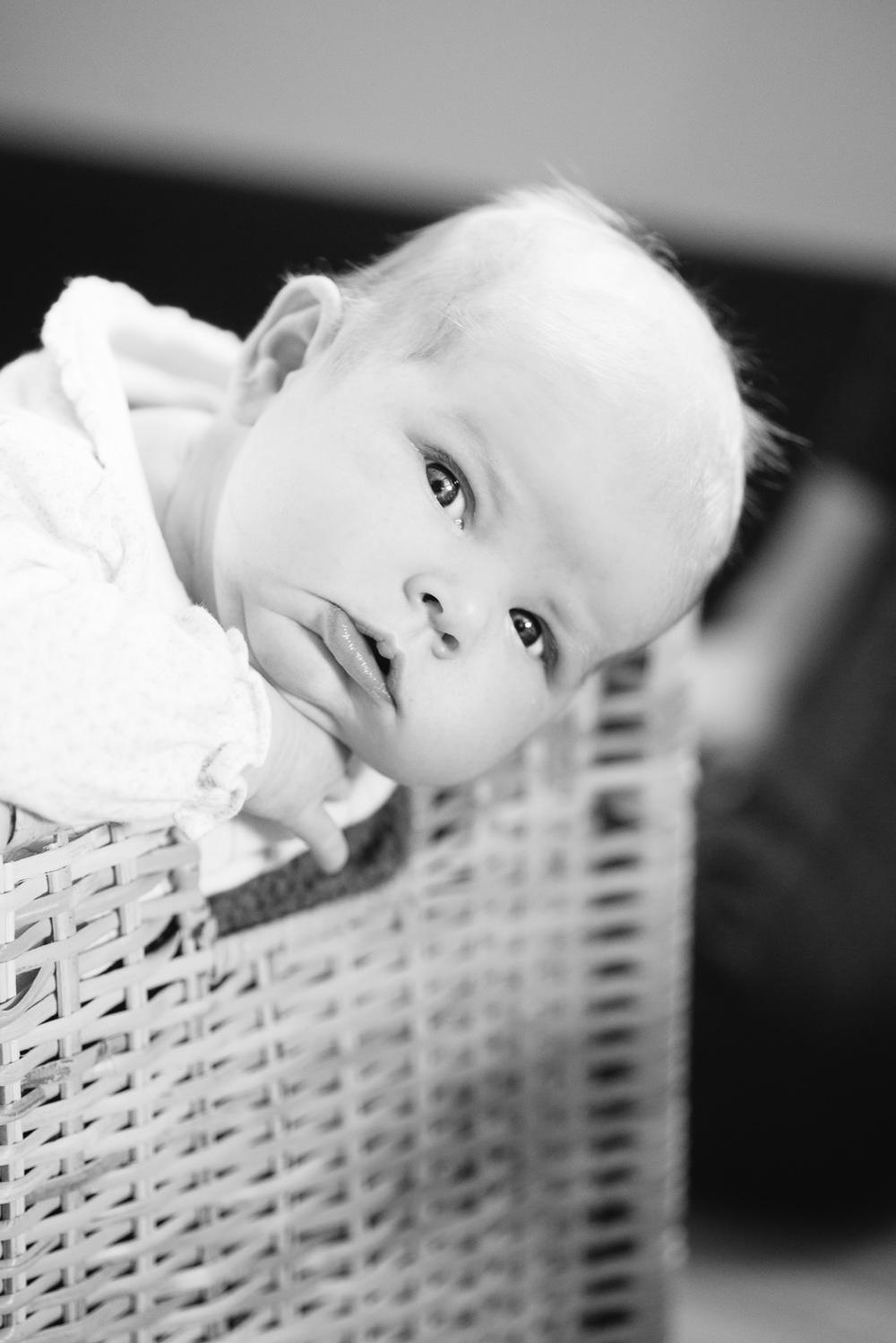davidiam-portrait-photographer-photography-003.jpg