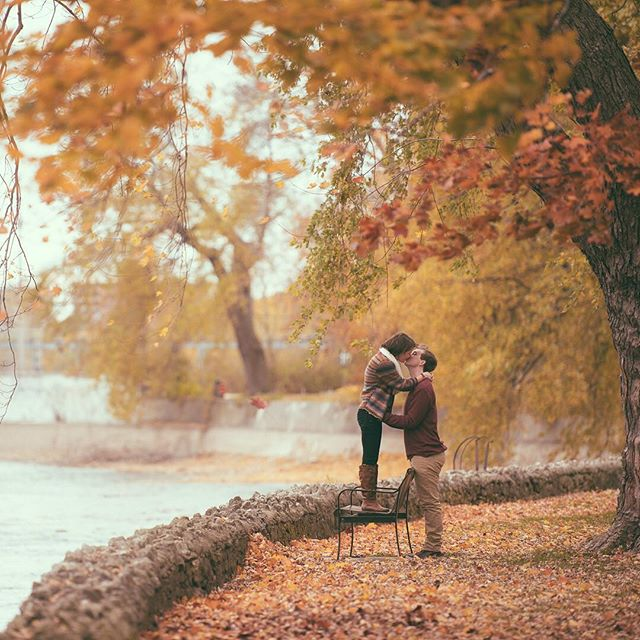 When I look at this photo, I can't help but feeling like I'm peering into some sort of a dream. Maybe it's because I know how sweet this amazing couple is, or maybe it's that dreamscape setting. Mmmmm. #davidiam #sweetcouple #dream #fall #autumn #parkbench #kiss #instalove #sweetness #leaves #portrait #stratfordweddingphotographer #guelphweddingphotographer #ontarioweddingphotographer #ilovemyjob #nikon #engagementphotographer #engagement