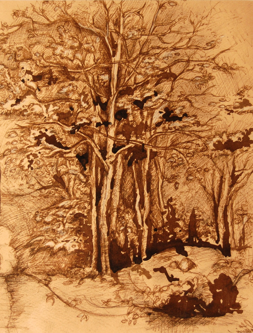 Forest in Sepia