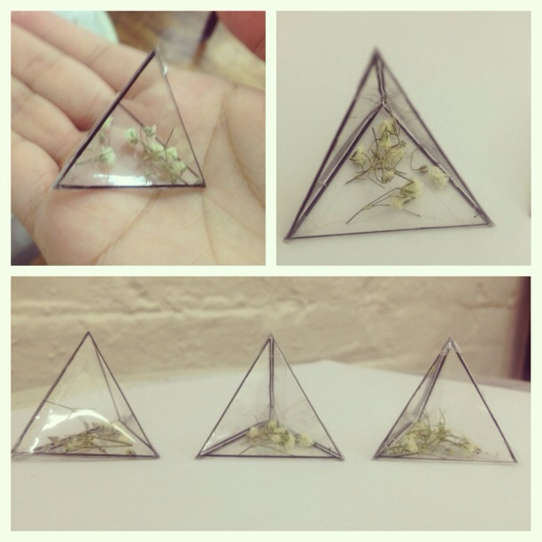 "Travelling Triangle    1"" x 1"" x 1"" acetate triangle, dried babies breath,  and ink"