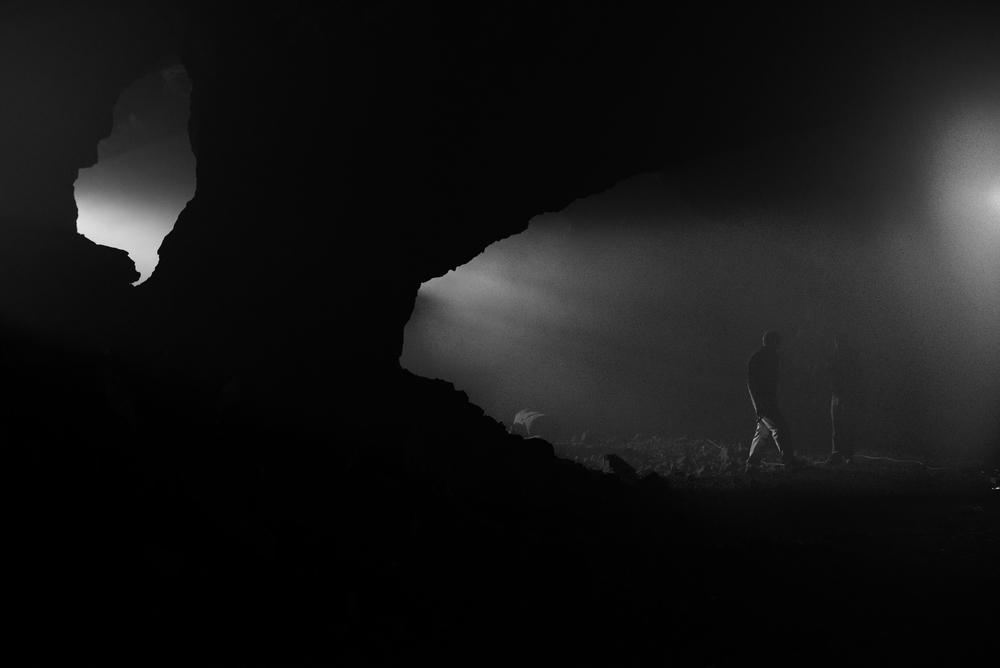 X Species Film