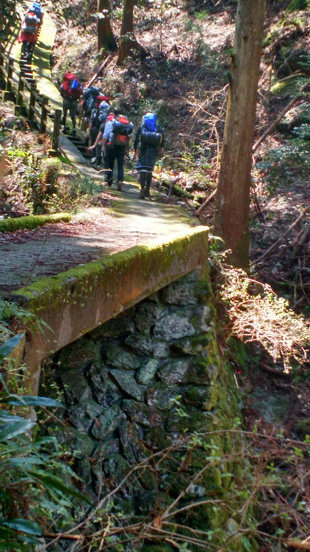 One of the bridges and stone stepped paths on the way up to the falls.