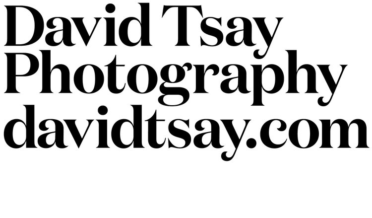 DAVID TSAY PHOTOGRAPHY | davidtsay.com