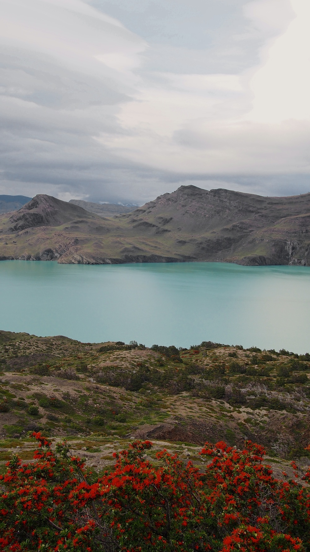 Even under cloudy weather, the colors of Torres del Paine standout beautifully