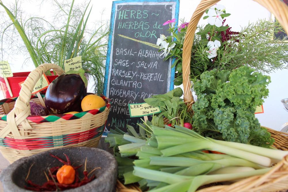 Fresh organic produce from our neighborhood farm