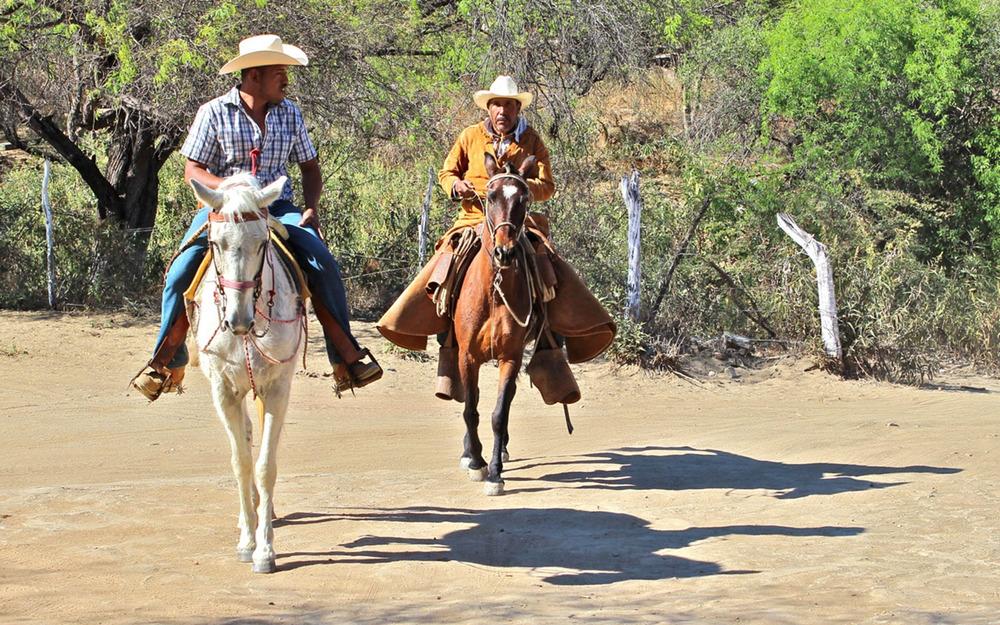 Local Rancheros