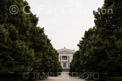 College-Harvard-CoEdit267.jpg