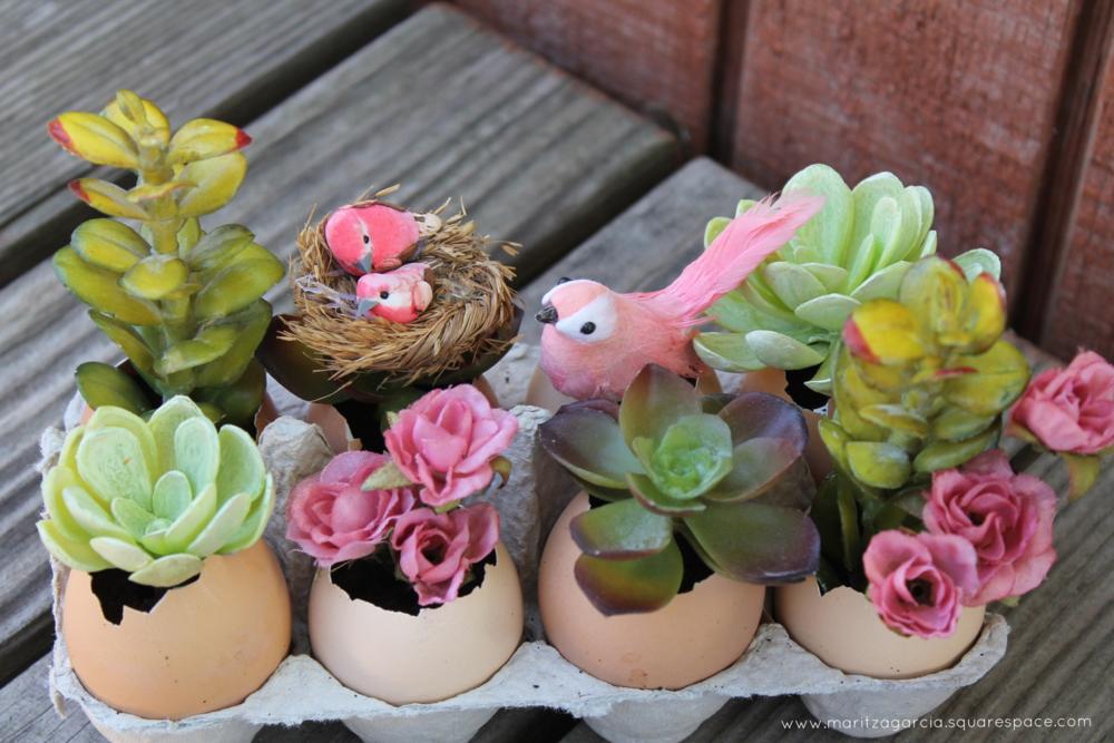 DIY Eggshell Garden