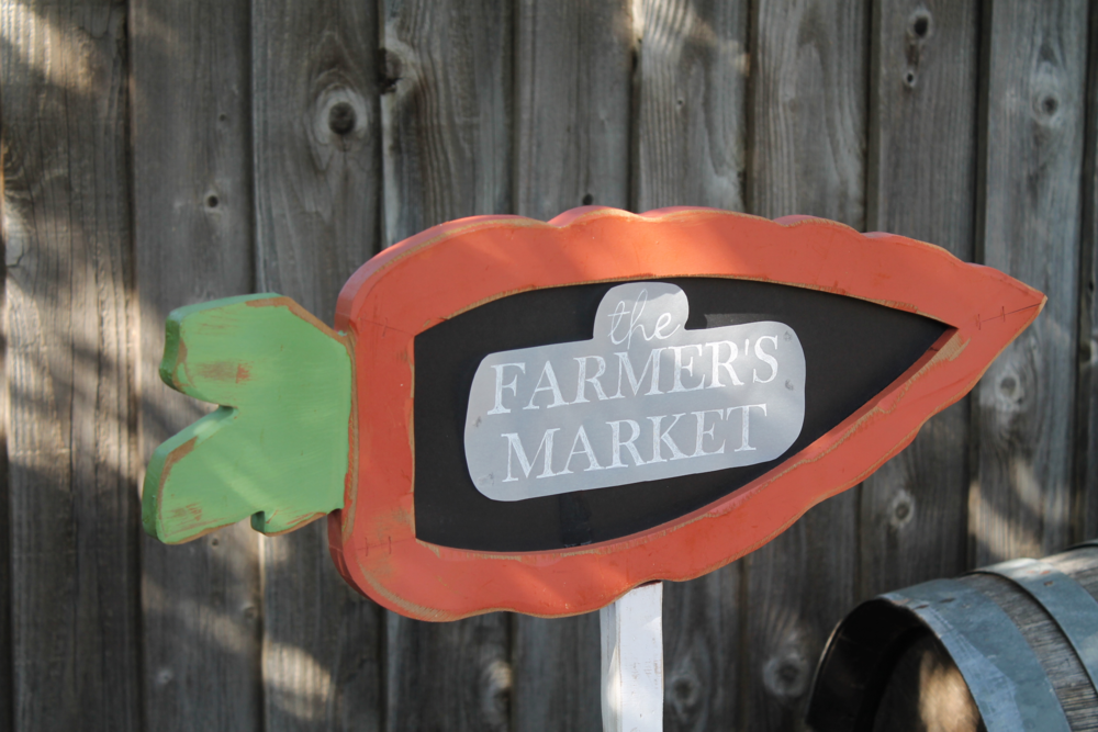 Carrot Shaped Garden Sign | maritza garcia
