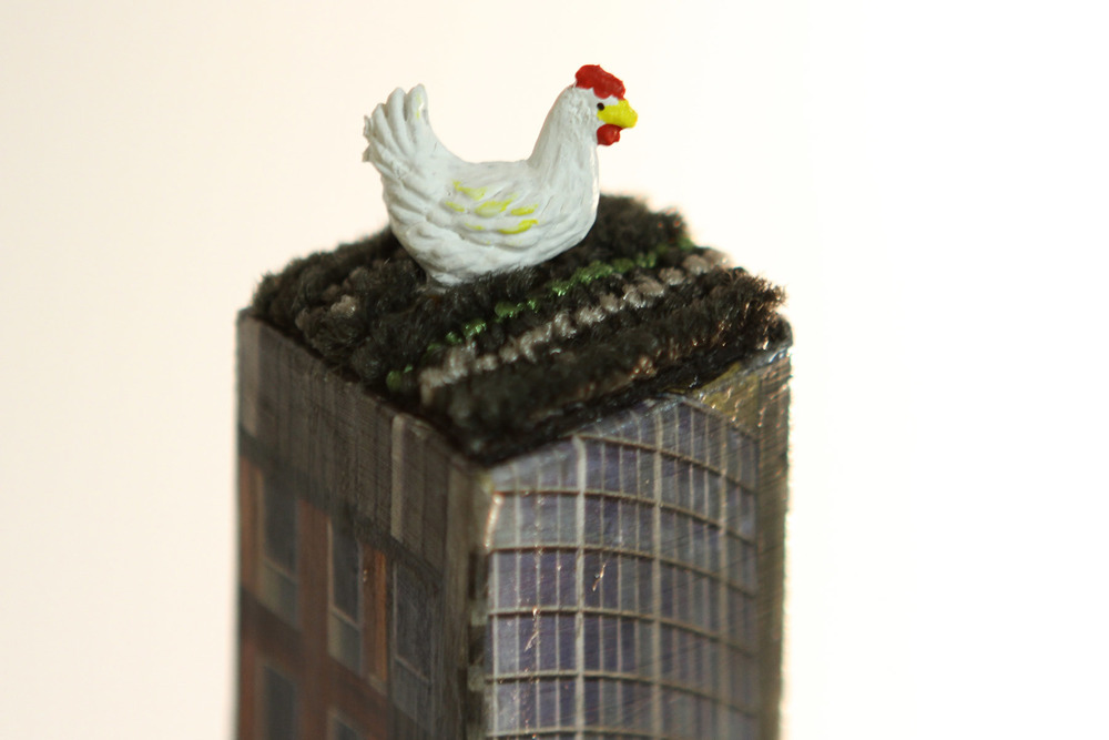 P2_Chicken_3.jpg