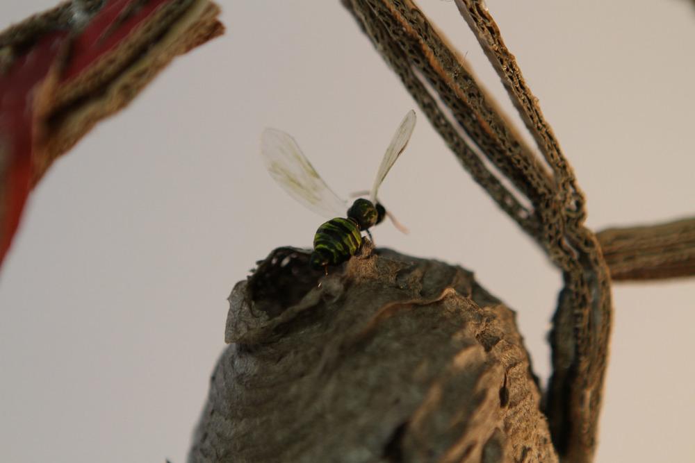 P13_Queen Bee (8).jpg