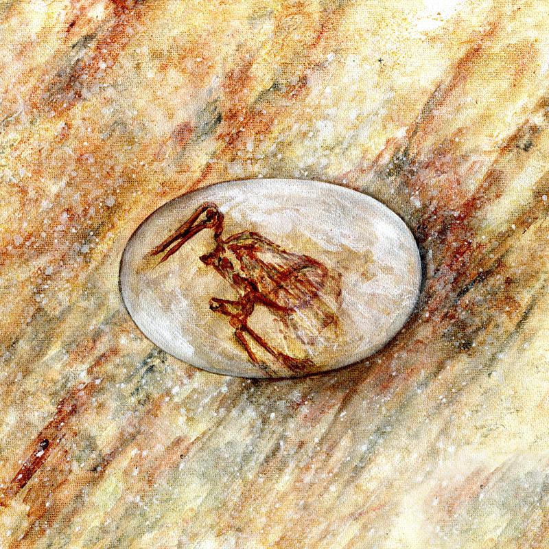 Eggosaurus.jpg