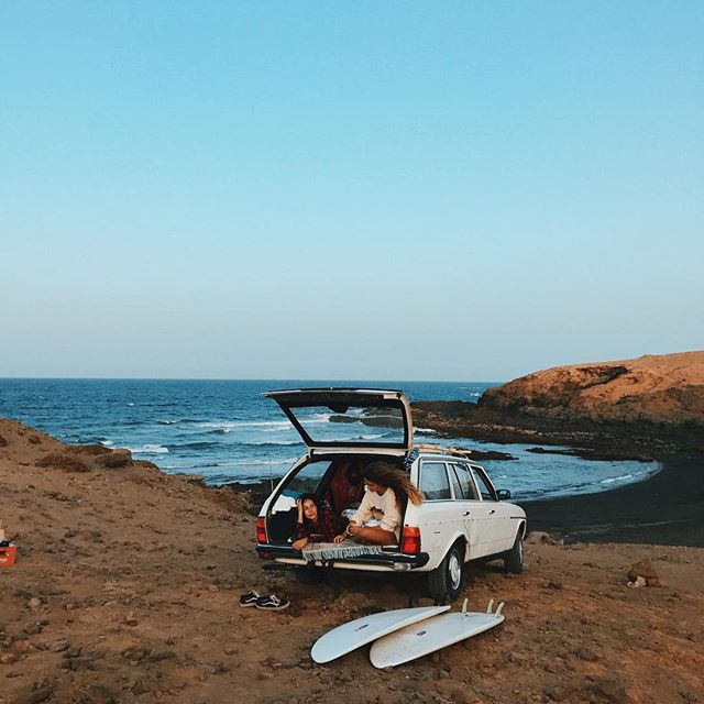 "canary kind of ""board meeting"" •