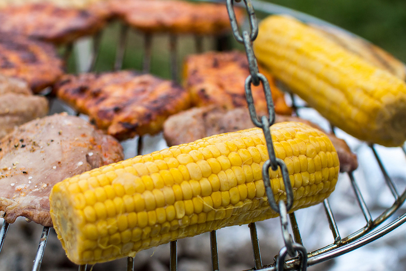 Le maïs est bon pour nos chiens mais mauvais lorsqu'il est entier