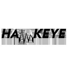 hawkeye-logo.png