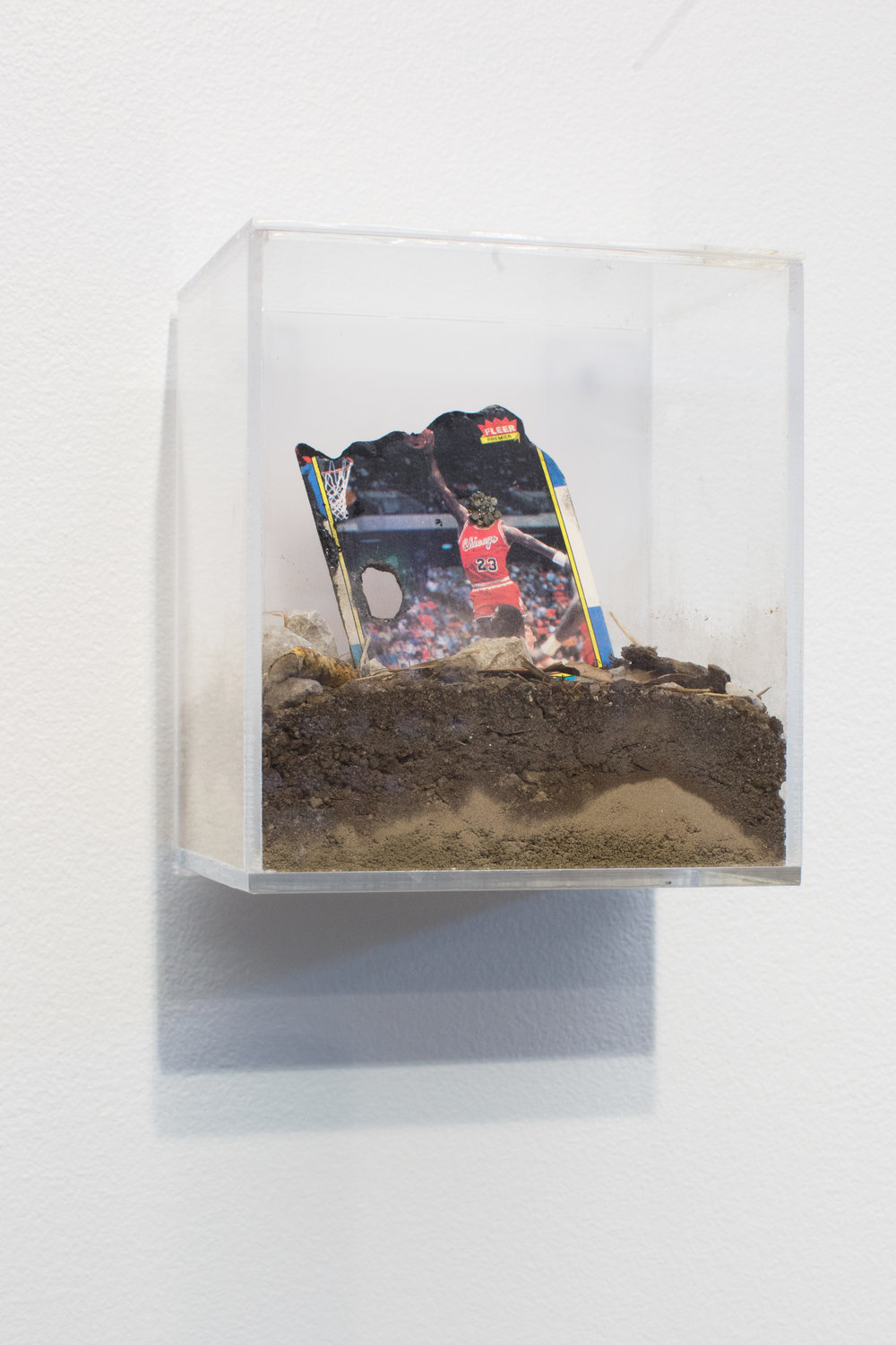 Jordan Weber.    King Leopold II  , 2015.  Moon Rocks, Michael Jordan rookie card, soils from sites in Ferguson, MO; Charleston, SC; site of Custer's Last Stand, Eastern Montana; slave plantation, Tennessee; and site of Wounded Knee Massacre, Lakota Pine Ridge Reservation, SD