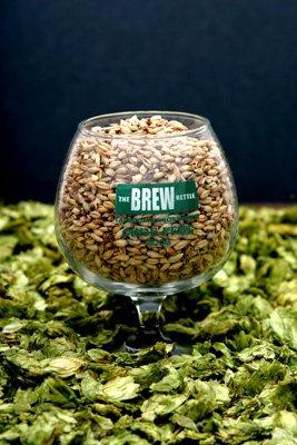 Brew Kettle.jpg