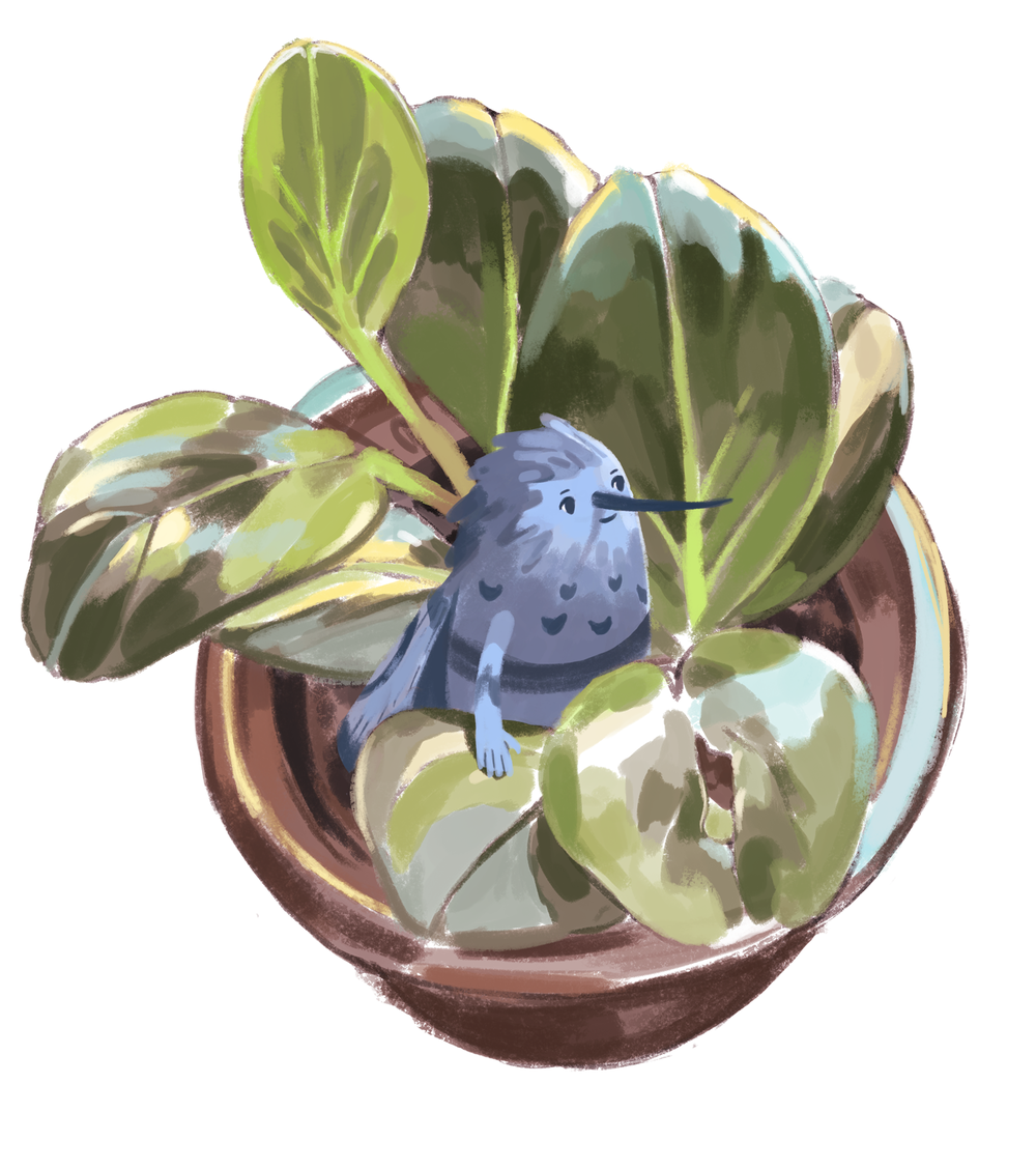 plant2.png