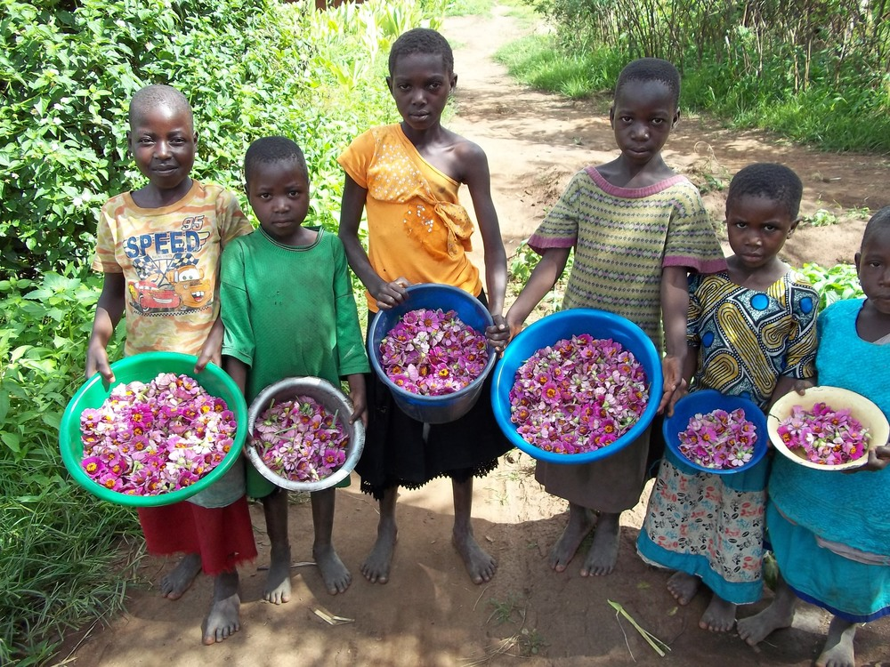 Farming To date Cara Malawi has helped the Villages to secure over 800 livestock and provided training on animal hygiene.  Read More...
