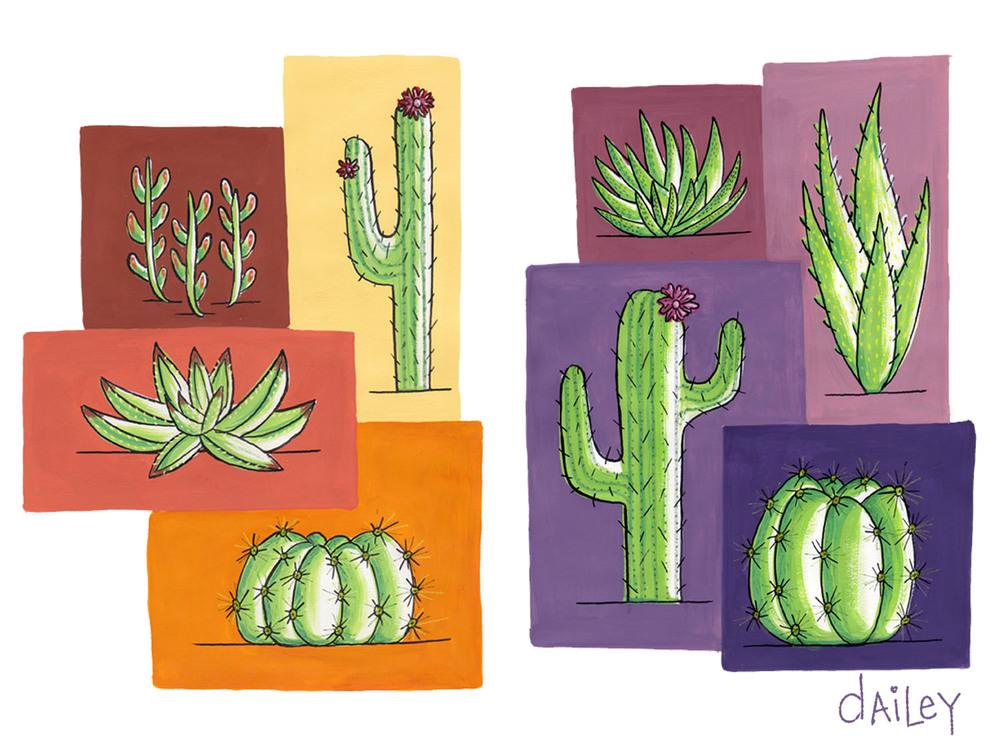 Cacti_CaitlynDailey.jpg