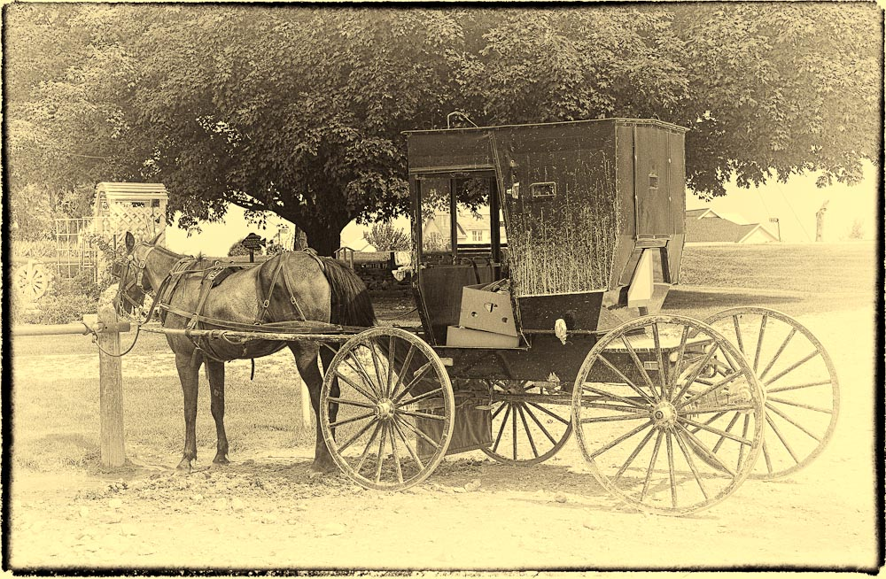Amish Buggy Iowa Silver EFX Pro 2
