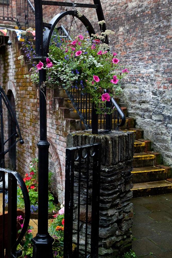 Irish Scenes-8872.jpg