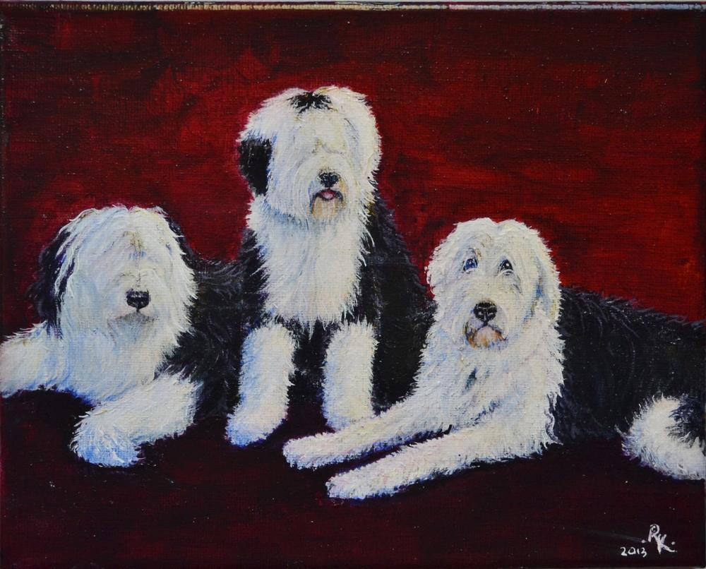 Three Sheepdogs