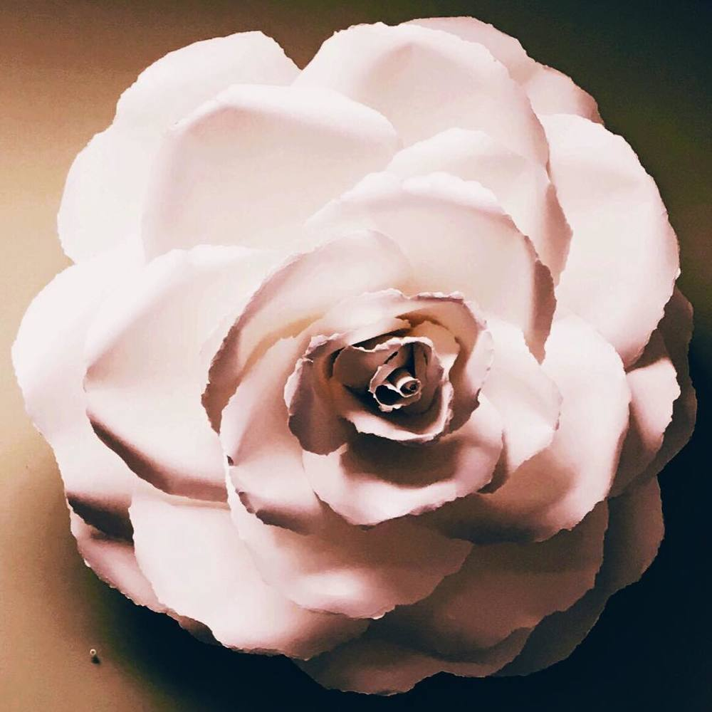 Flowers:  Flowers as art, flowers that last.  Paper sculptor  Michele Tremblay's  creations will take your breath away. Peruse her paper garden of loveliness at  @artofmichelestudio on Instagram . (To order contact Michele via  email .)