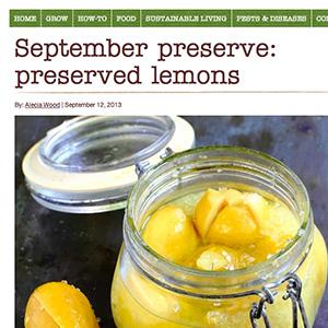 og-lemon.jpg