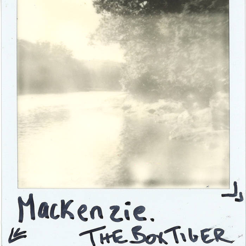 The Box Tiger - Mackenzie