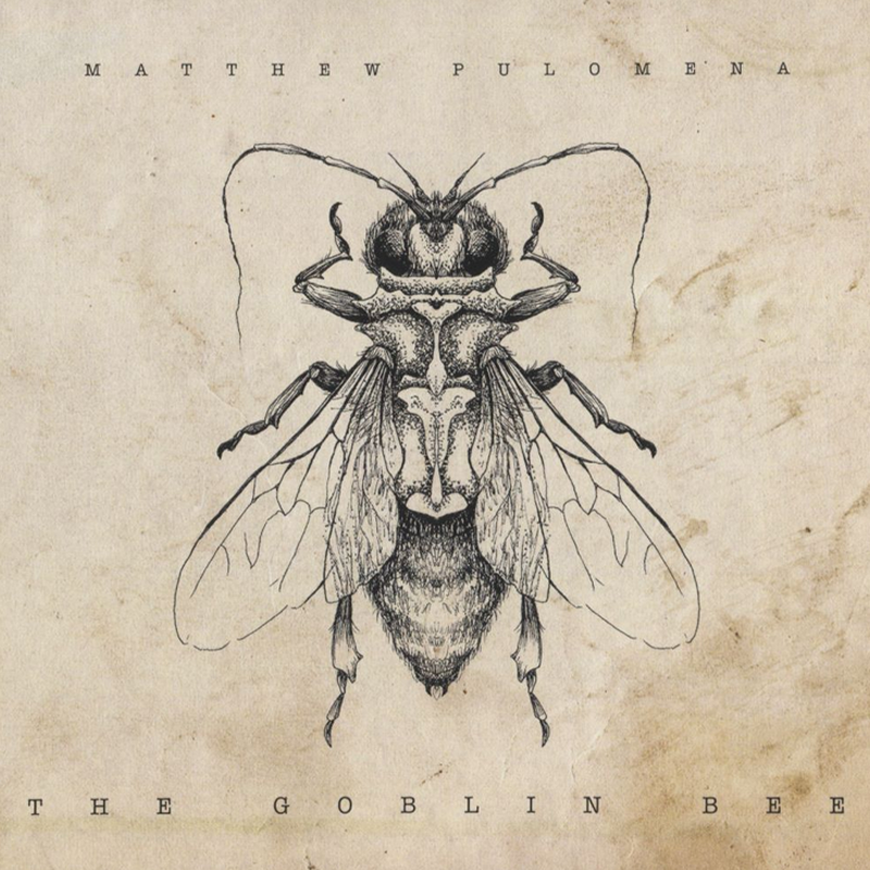 Matthew Pulomena - The Goblin Bee