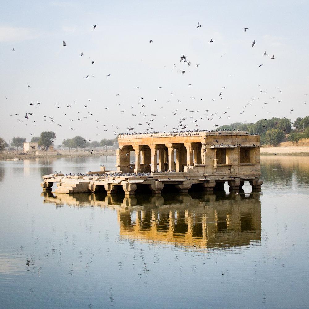 India29.jpg