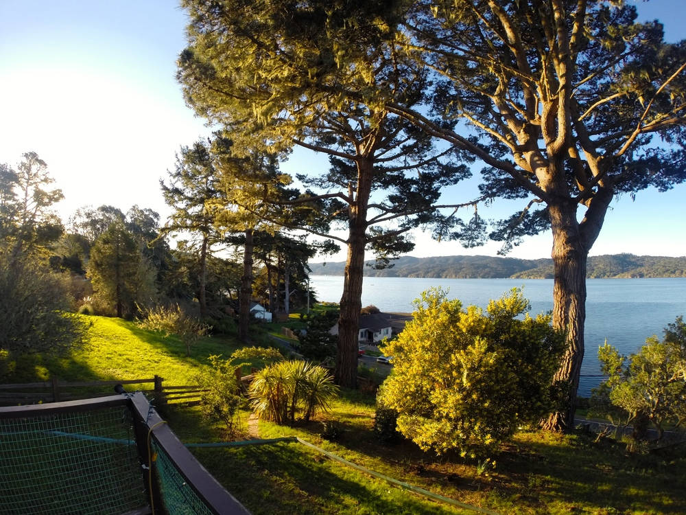 Our digs on Tomales Bay. WOW! (Thanks, Tony Magee!)