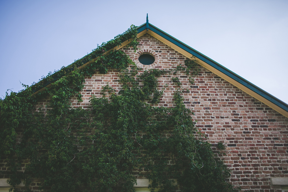 montrose-berry-farm-wedding_57.jpg