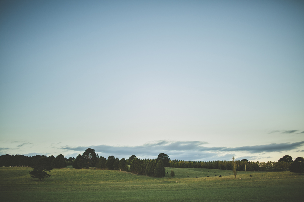 southern highlands winery wedding_098.jpg
