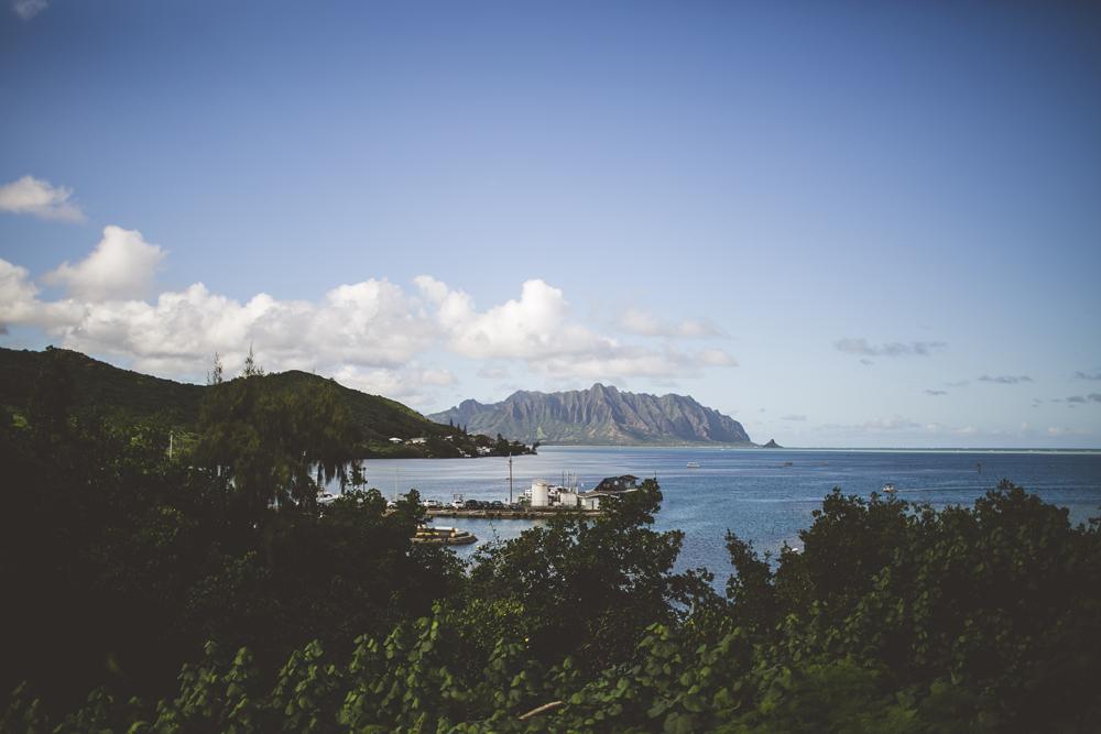 hawaii-wedding-videographer_08.jpg