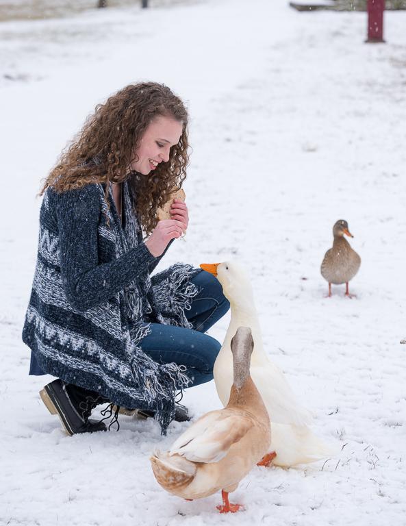 Dorney Snow 180116_6450-2.jpg