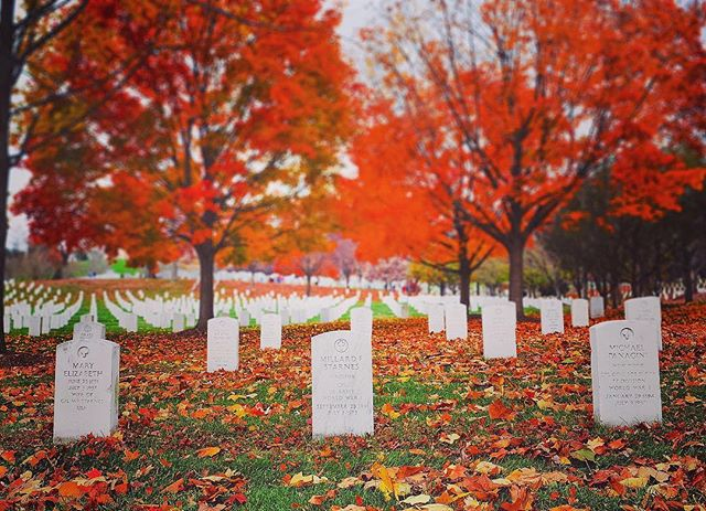 Happy Veterans Day!!! Thanks to all the men and women who served and continue to serve this great nation and for protecting the rights and freedoms we hold so dear... #veteransday #arlingtonnationalcemetery