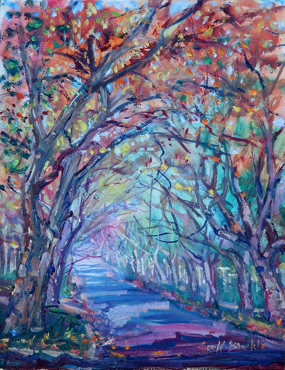 Autumn Trees, Wahroonga