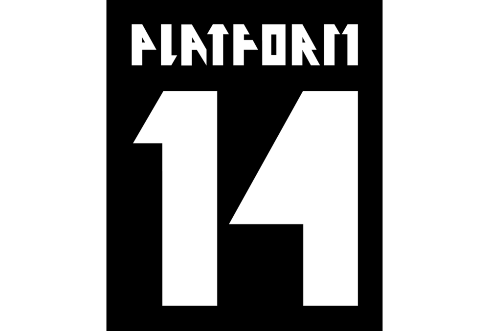 PLATFORM 14 (GRADUATE SHOW 2013)