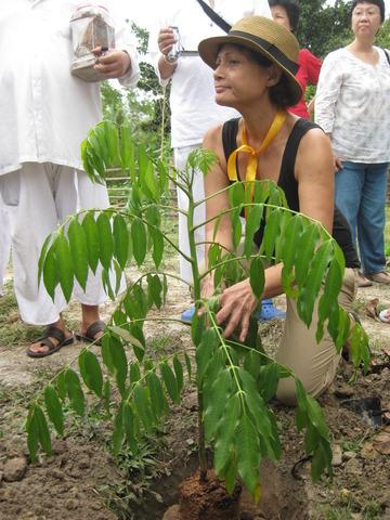 Tree Planting at Tanjung Sutera.jpg