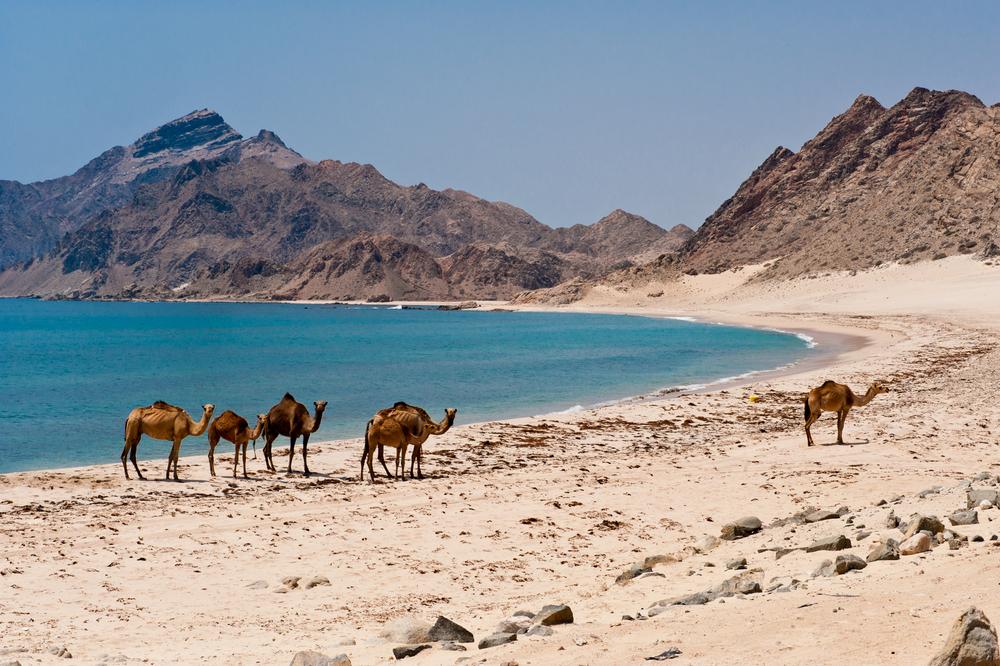 Dhofar Beach 1.jpg