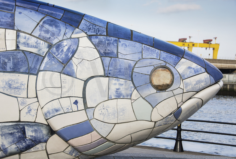 The Big Fish 2