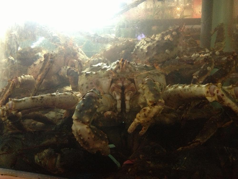 Giant creepy crab