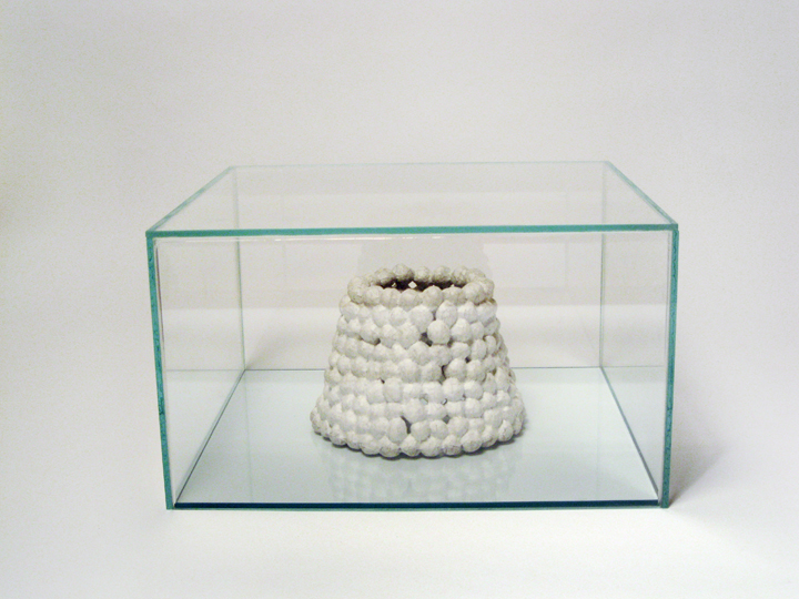 "Fort Snowball , 2011. Hazelnuts, cut-and-pasted handmade paper, glass box. 10.25"" x 18"" x 17"""