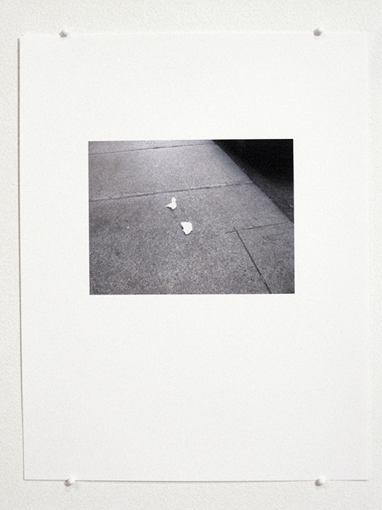 "a hole is a true 4    (Detail 10), 2013-14. Inkjet print. 11"" x 8.5"""