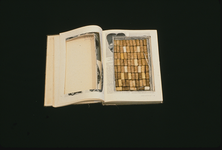 "H. W. Janson's History of Art , 1991. Altered book, sugar cubes, beeswax, linen tape. 2.5"" x 17.75"" x 11.75"" (open)"
