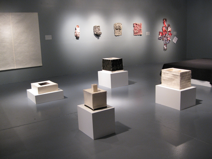 Art Sewn: Tradition, Innovation, Expression , 2011 - Five Myles, Brooklyn. Installation View