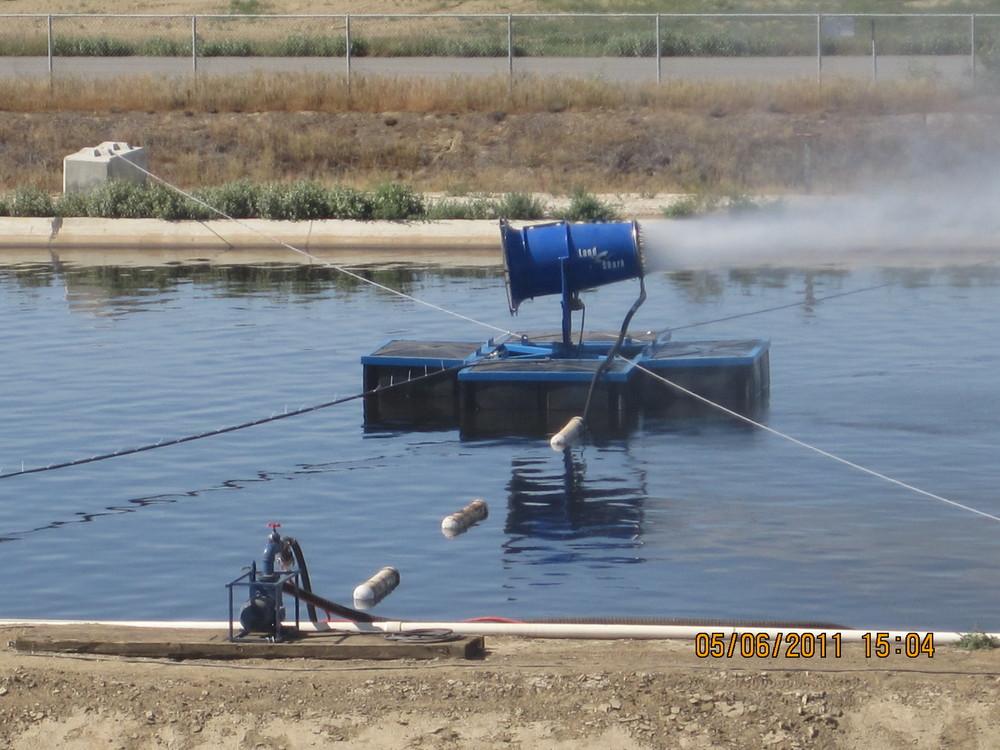 Floating Landshark